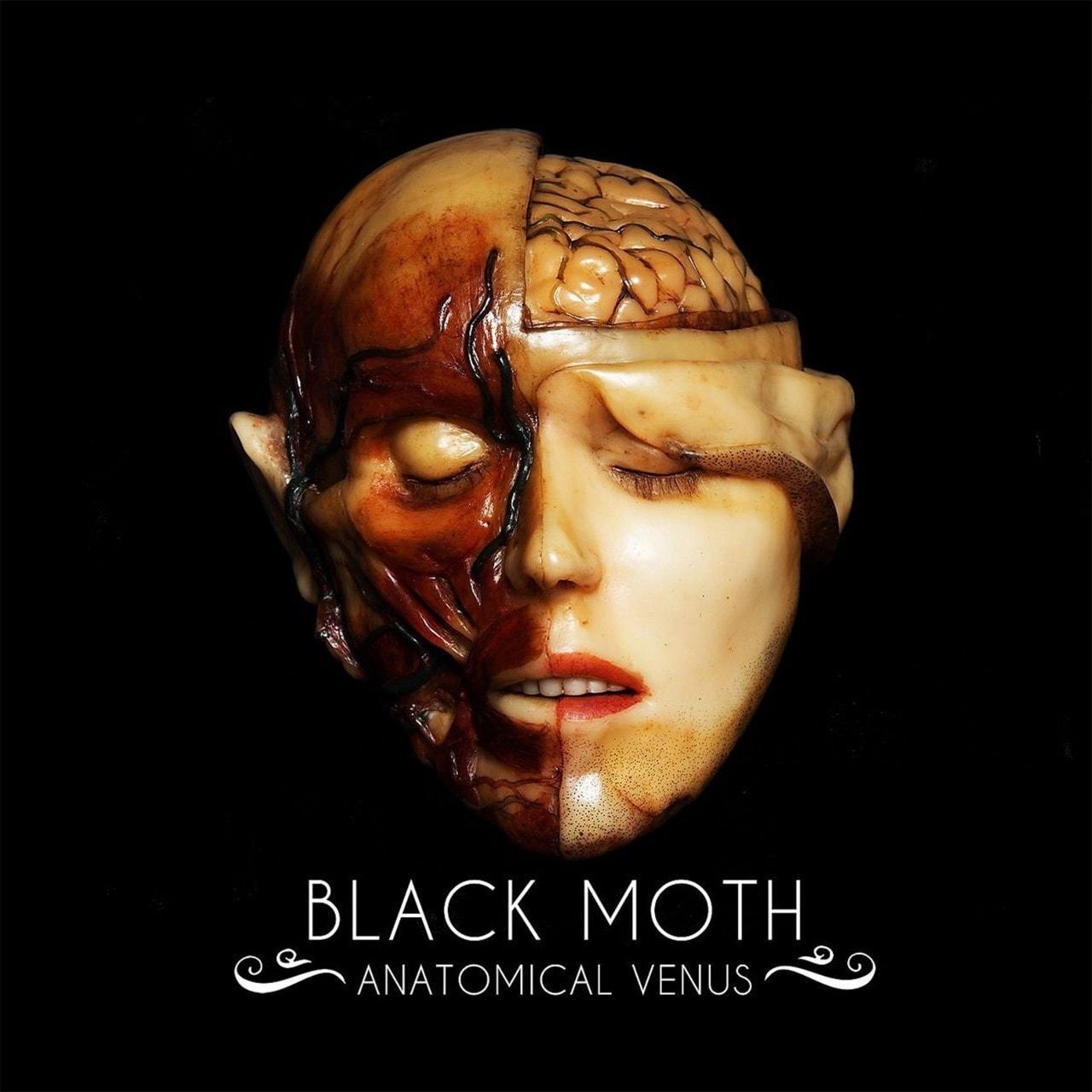 Anatomical Venus - 1