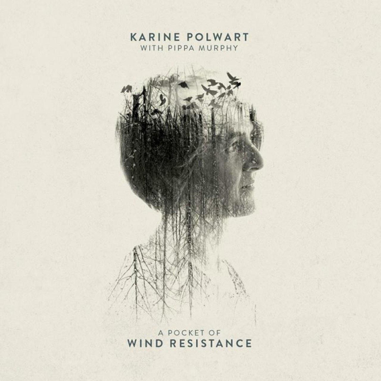 A Pocket of Wind Resistance - 1