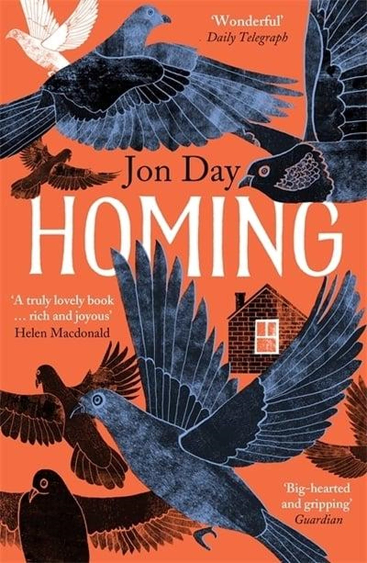 Homing: On Pigeons, Dwellings and Why We Return - 1