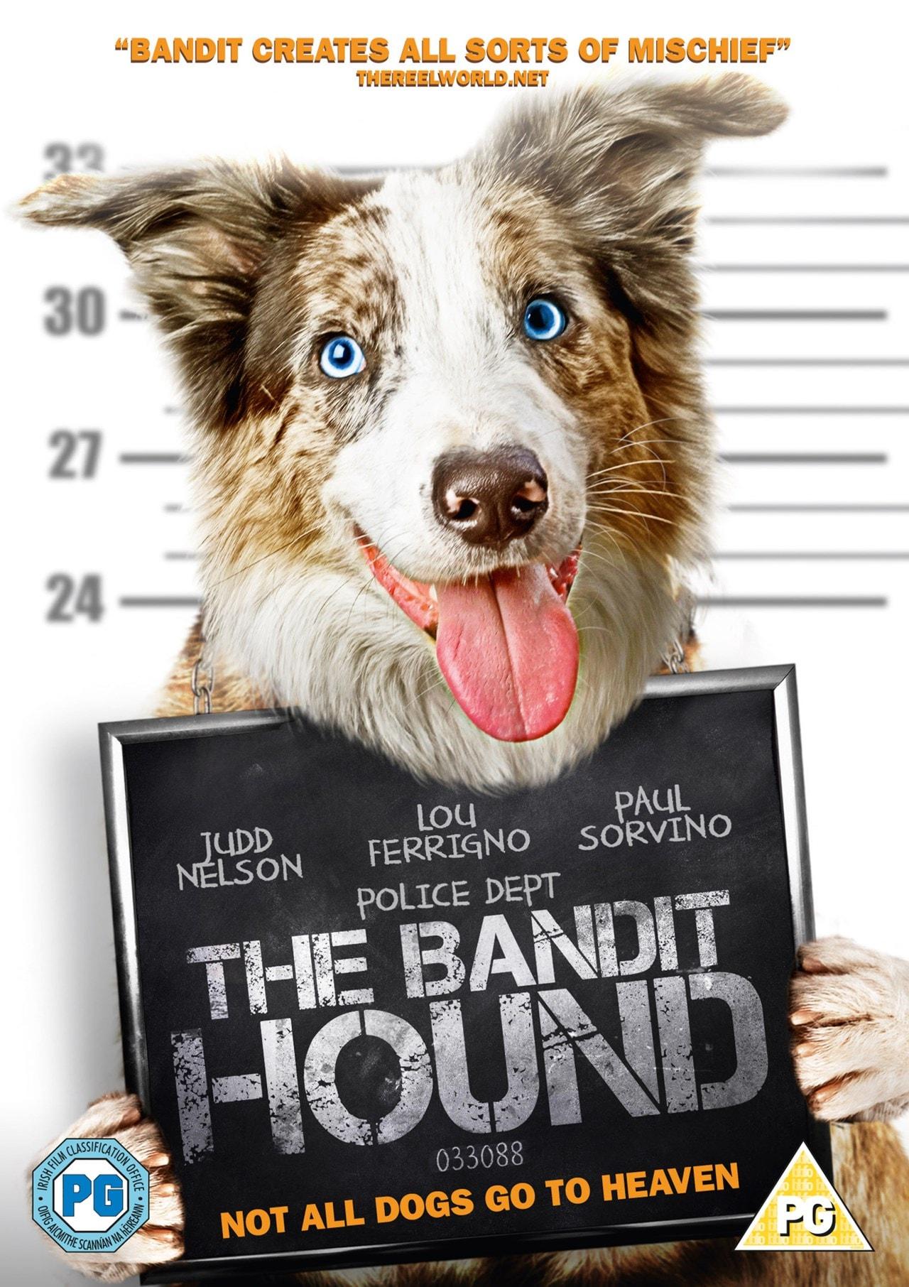 The Bandit Hound - 1