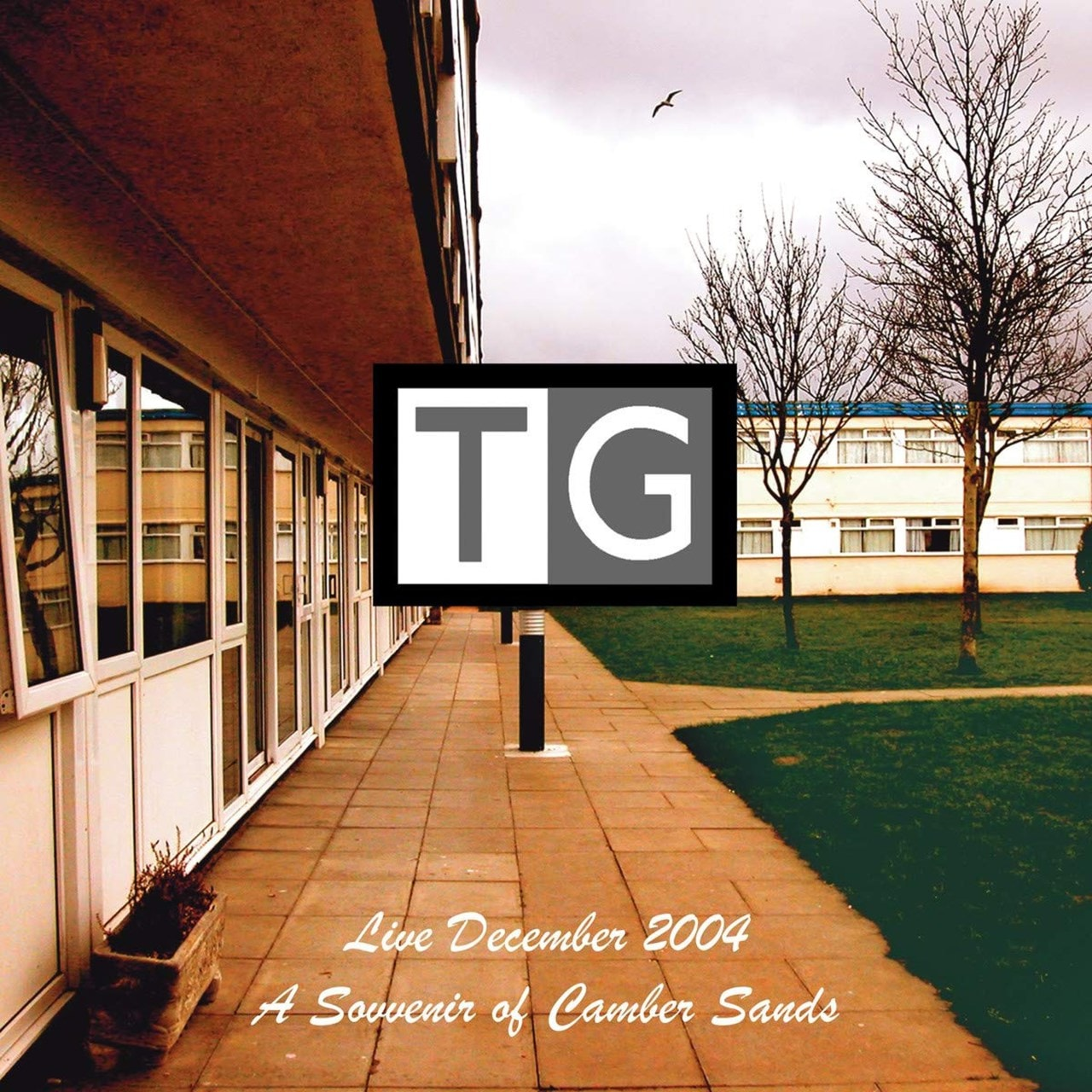 A Souvenir of Camber Sands: Live December 2004 - 1