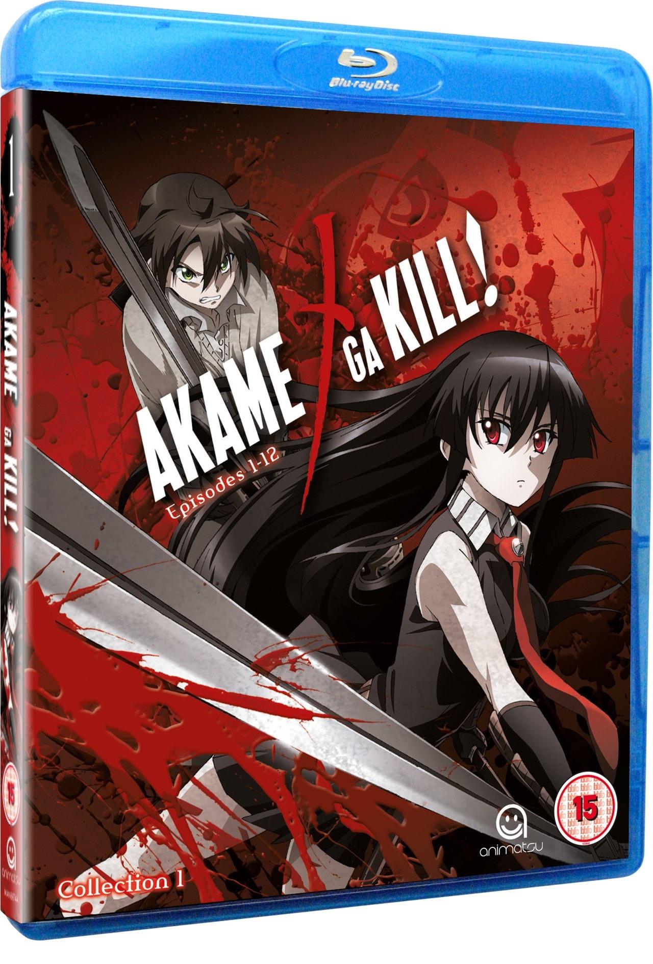 Akame Ga Kill: Collection 1 - 1