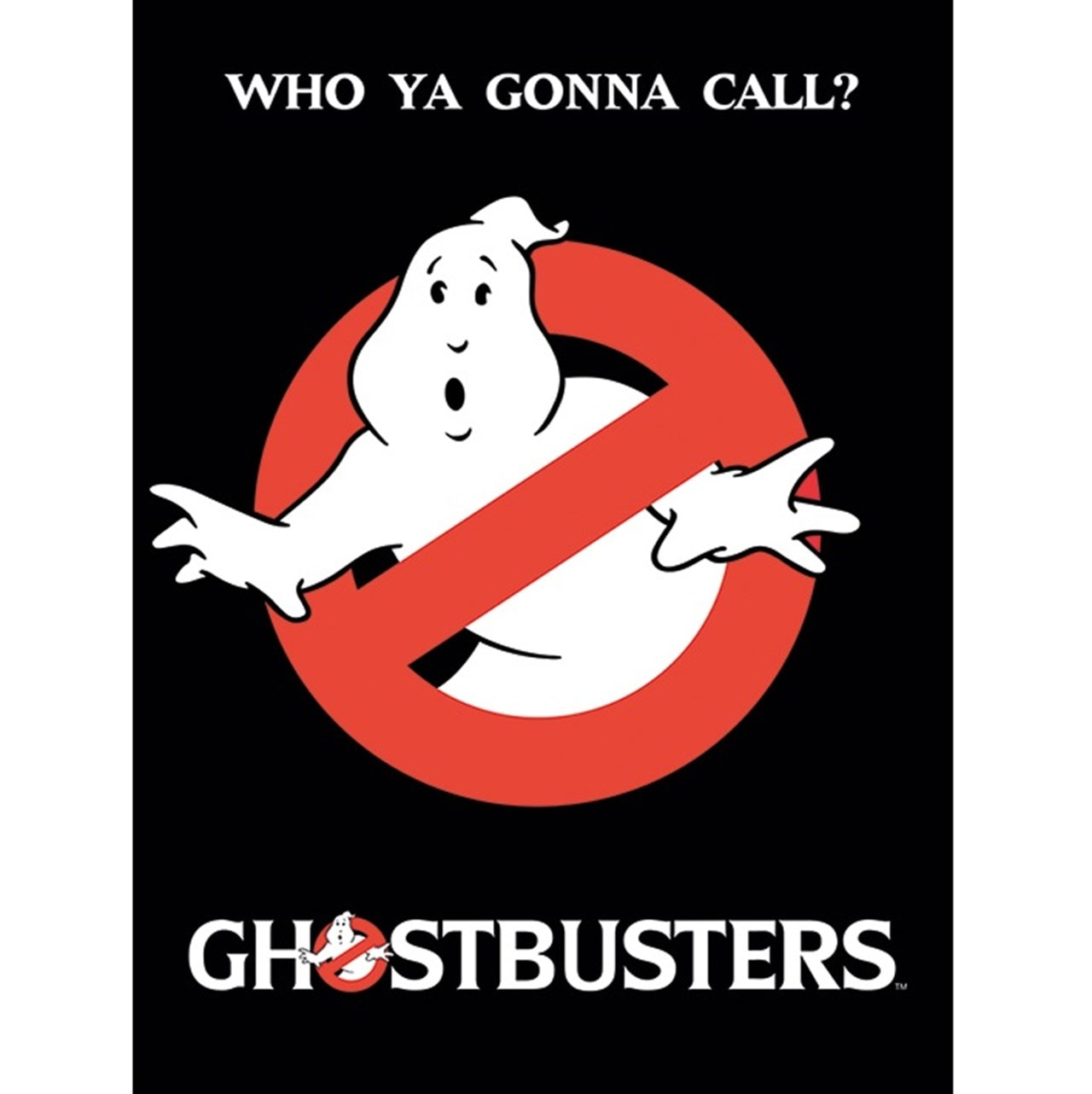 Ghostbusters: Who You Gonna Call? Canvas Print - 1