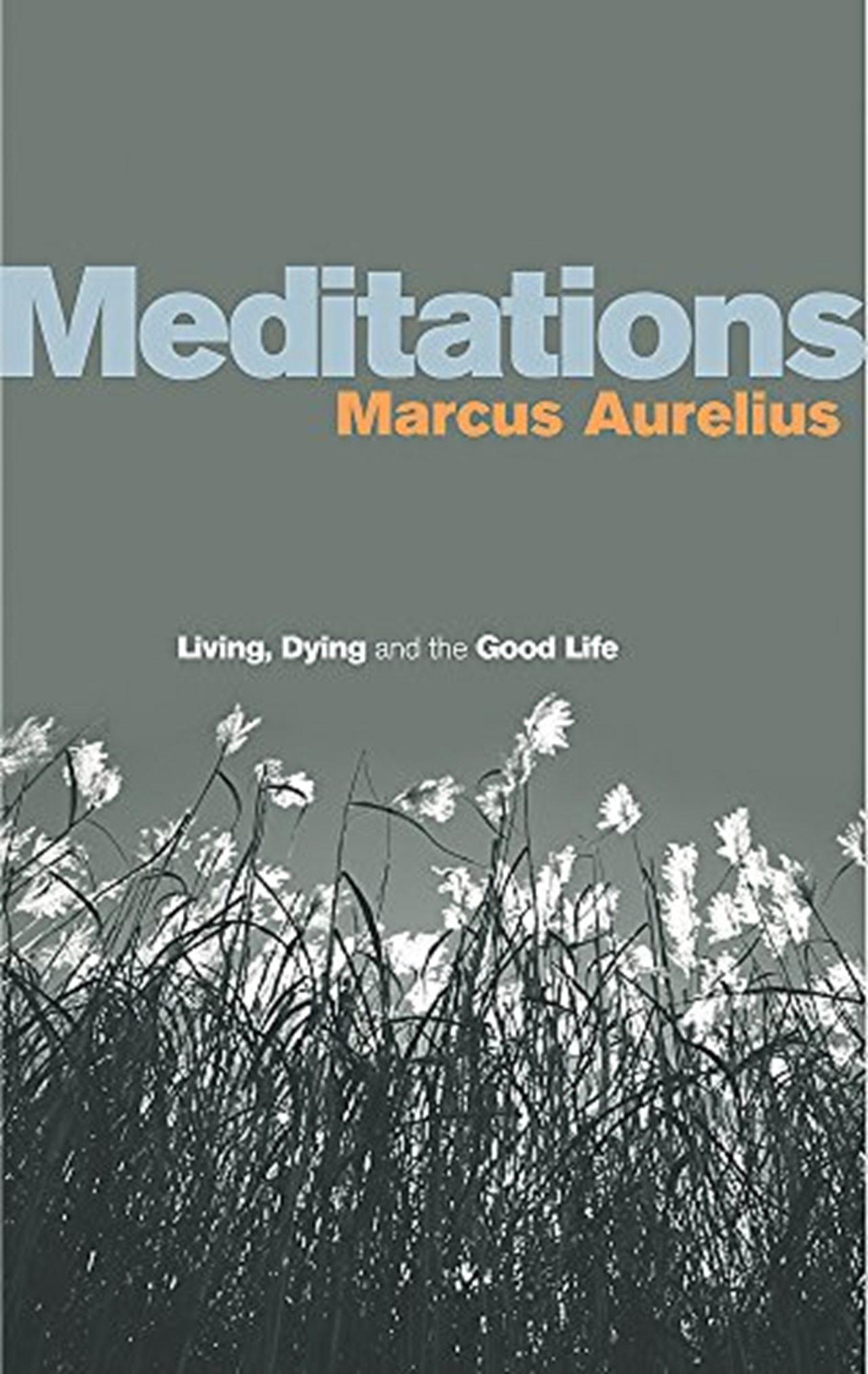 Meditations - 1
