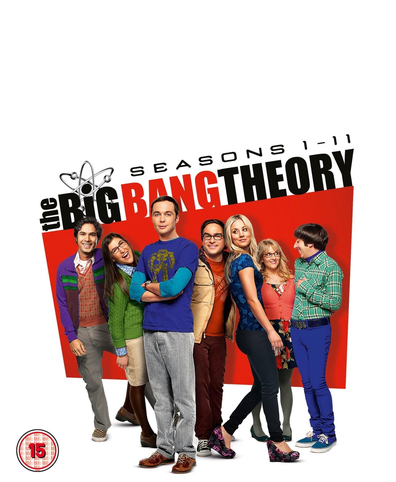 The Big Bang Theory: Seasons 1-11 - 1