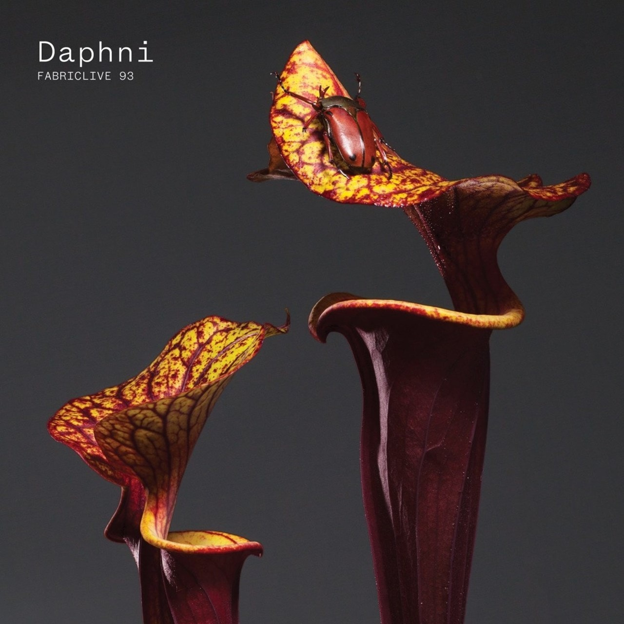 Fabriclive 93: Mixed By Daphni - 1
