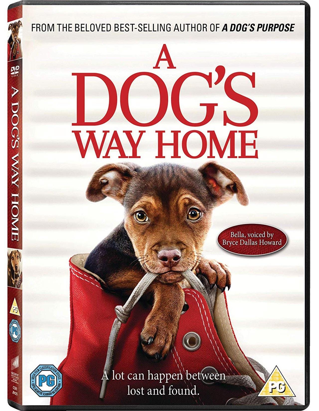 A Dog's Way Home - 2