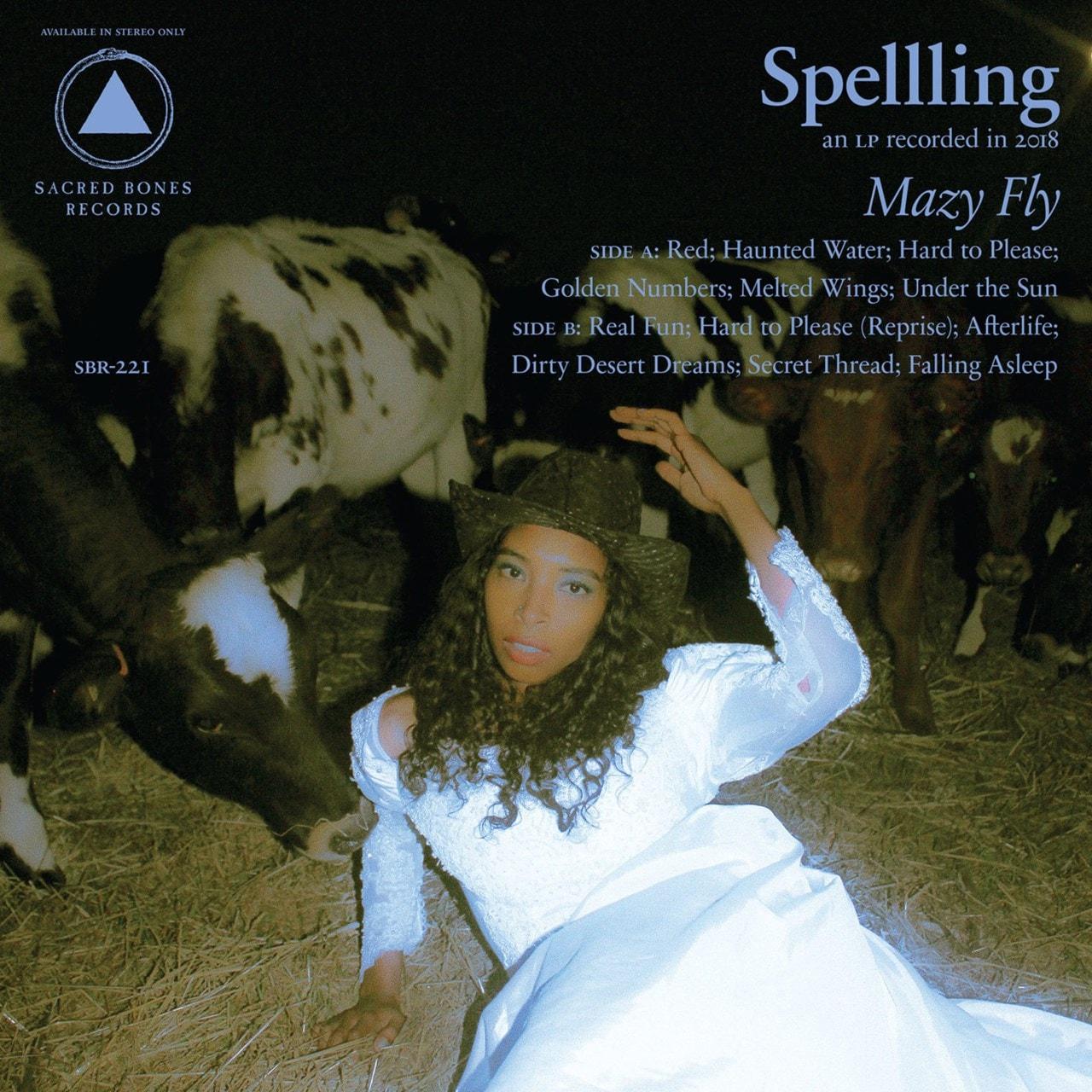 Mazy Fly - 1