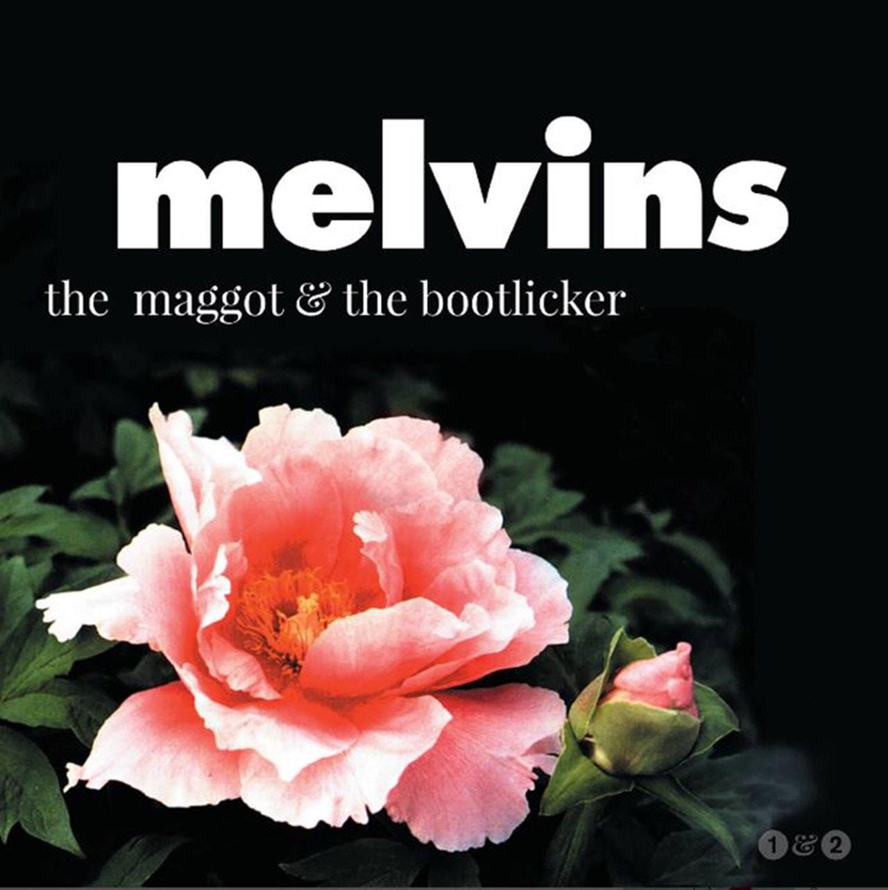 The Maggot & the Bootlicker - 1