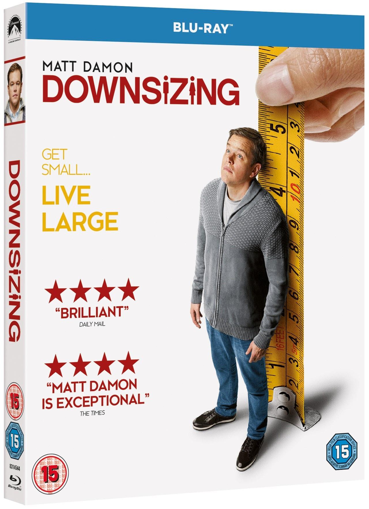 Downsizing - 2