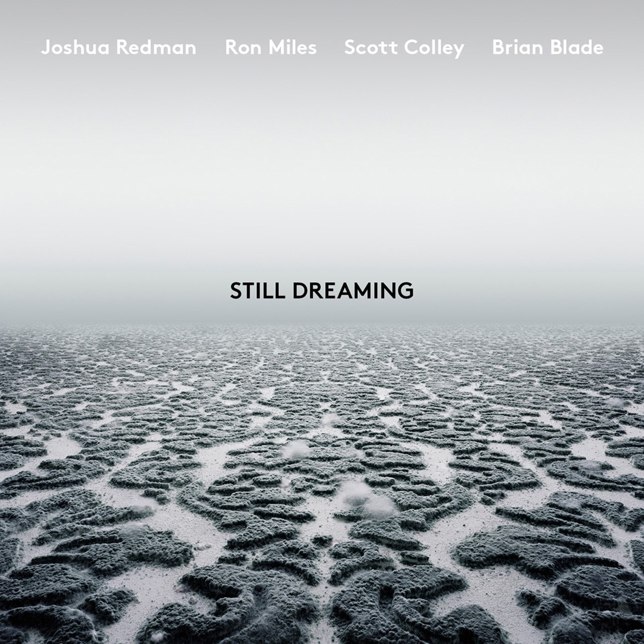 Still Dreaming (Feat. Ron Miles, Scott Colley & Brian Blade) - 1