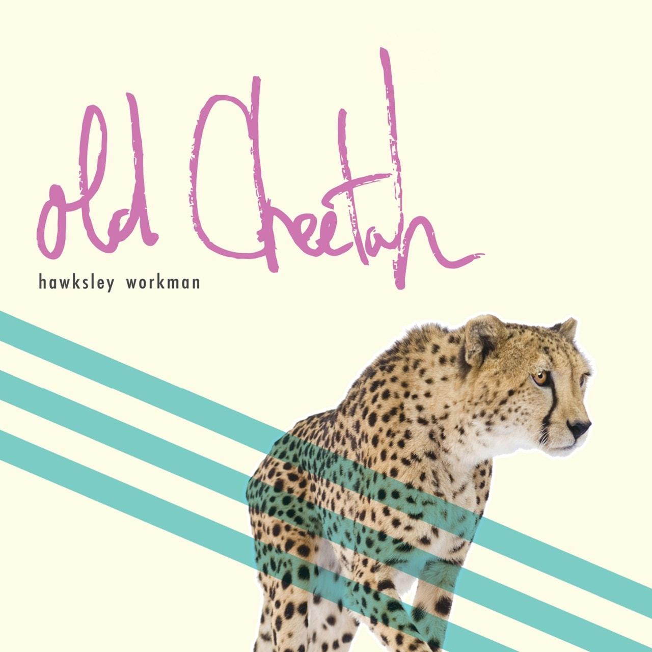 Old Cheetah - 1