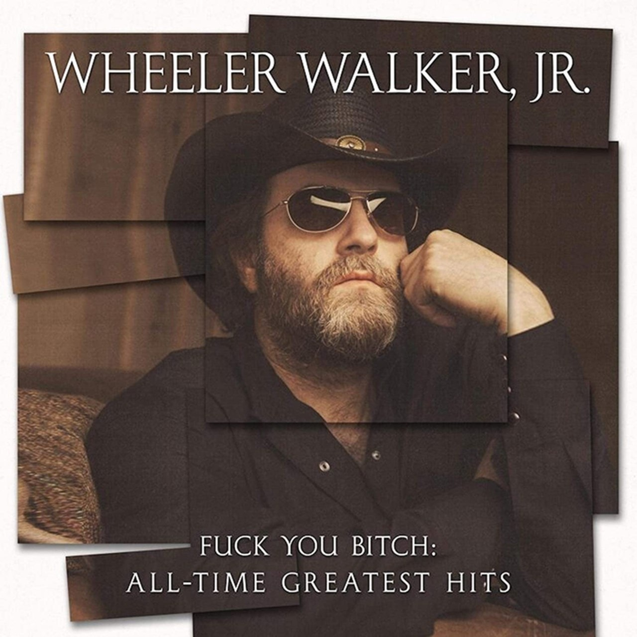 Fuck You Bitch: All-time Greatest Hits - 1