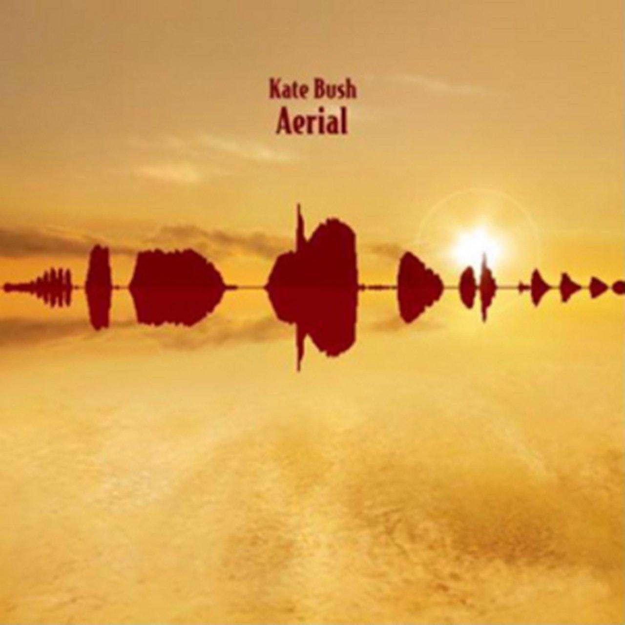 Aerial - 1