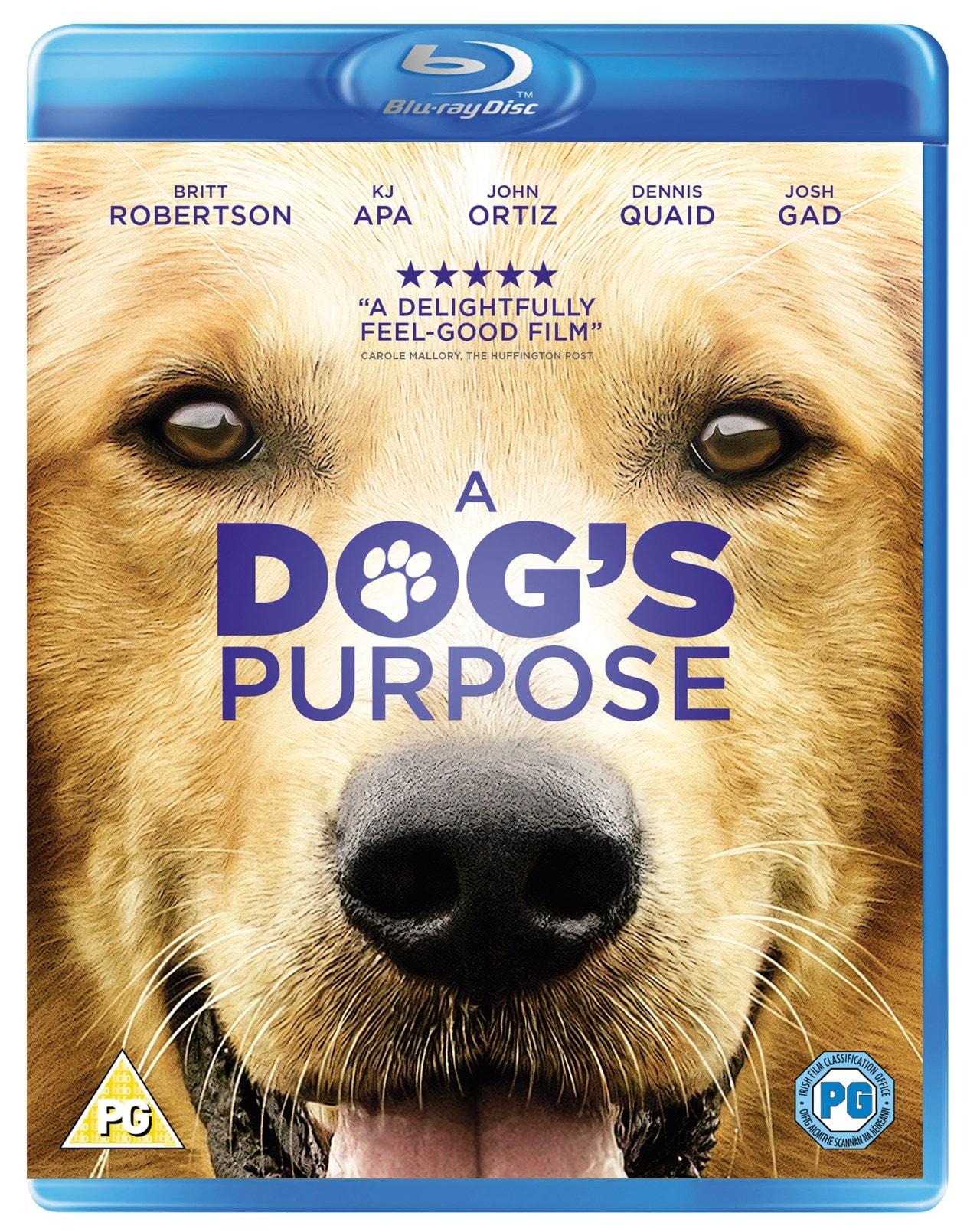 A Dog's Purpose - 1