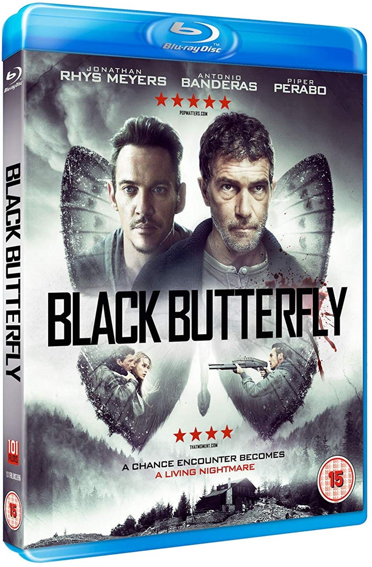 Black Butterfly - 2