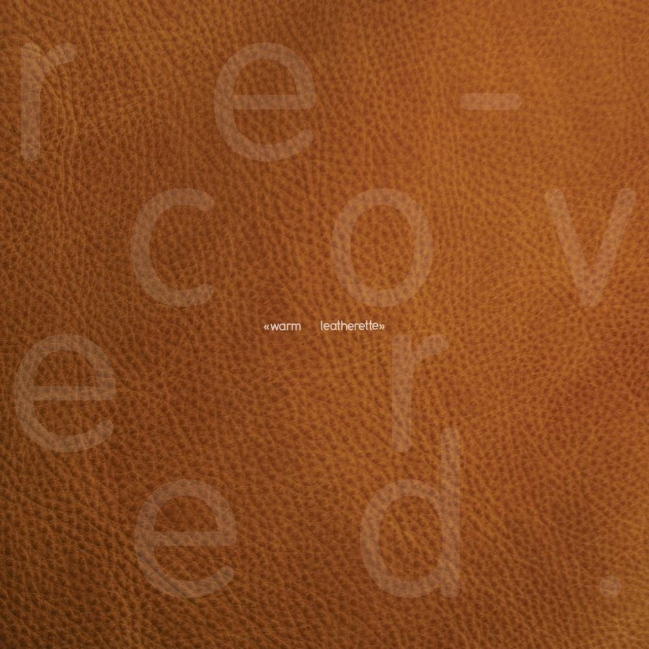 Warm Leatherette Re-covered - Tan Leatherette Vinyl (LRS20) - 1