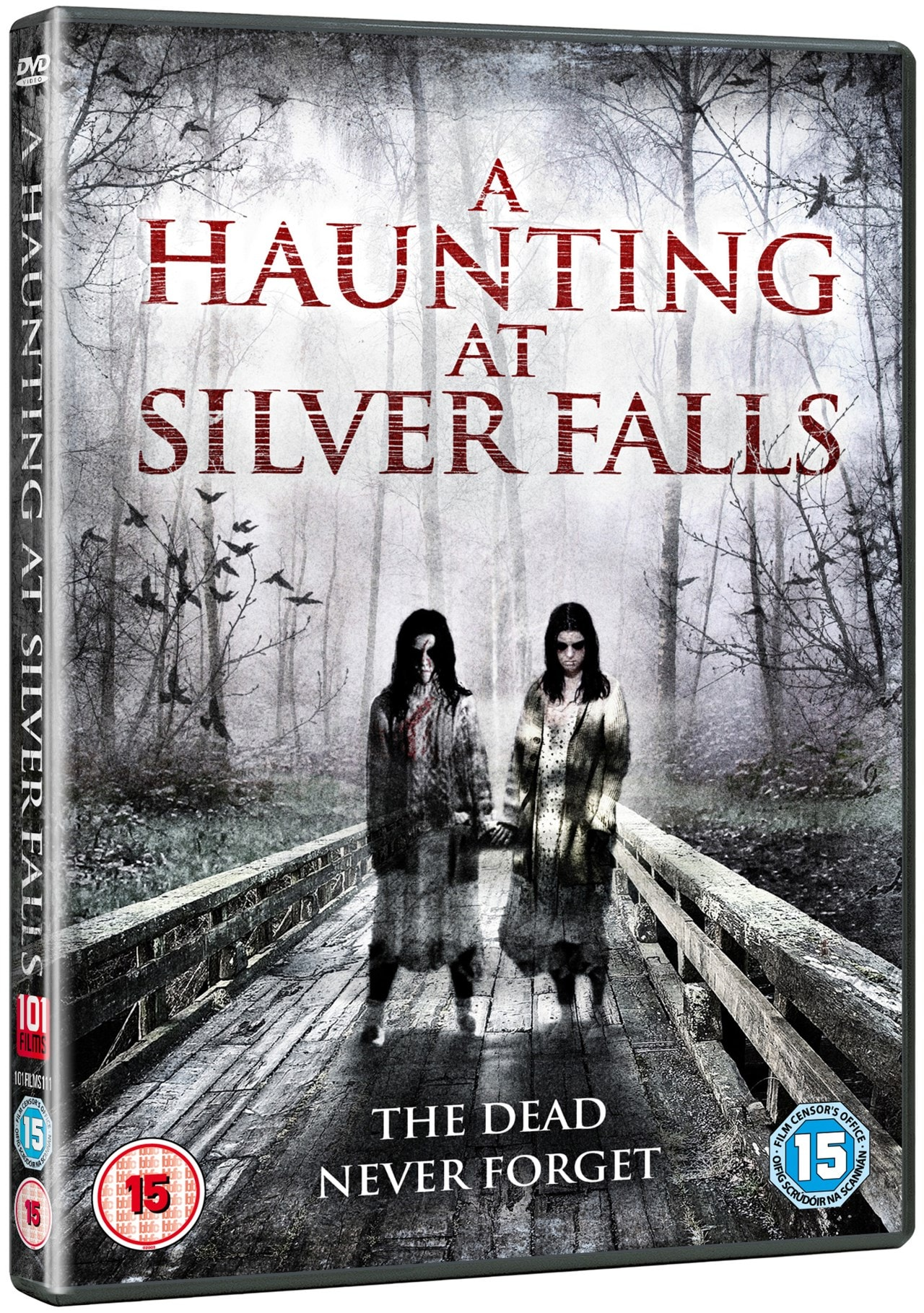 A Haunting at Silver Falls - 2
