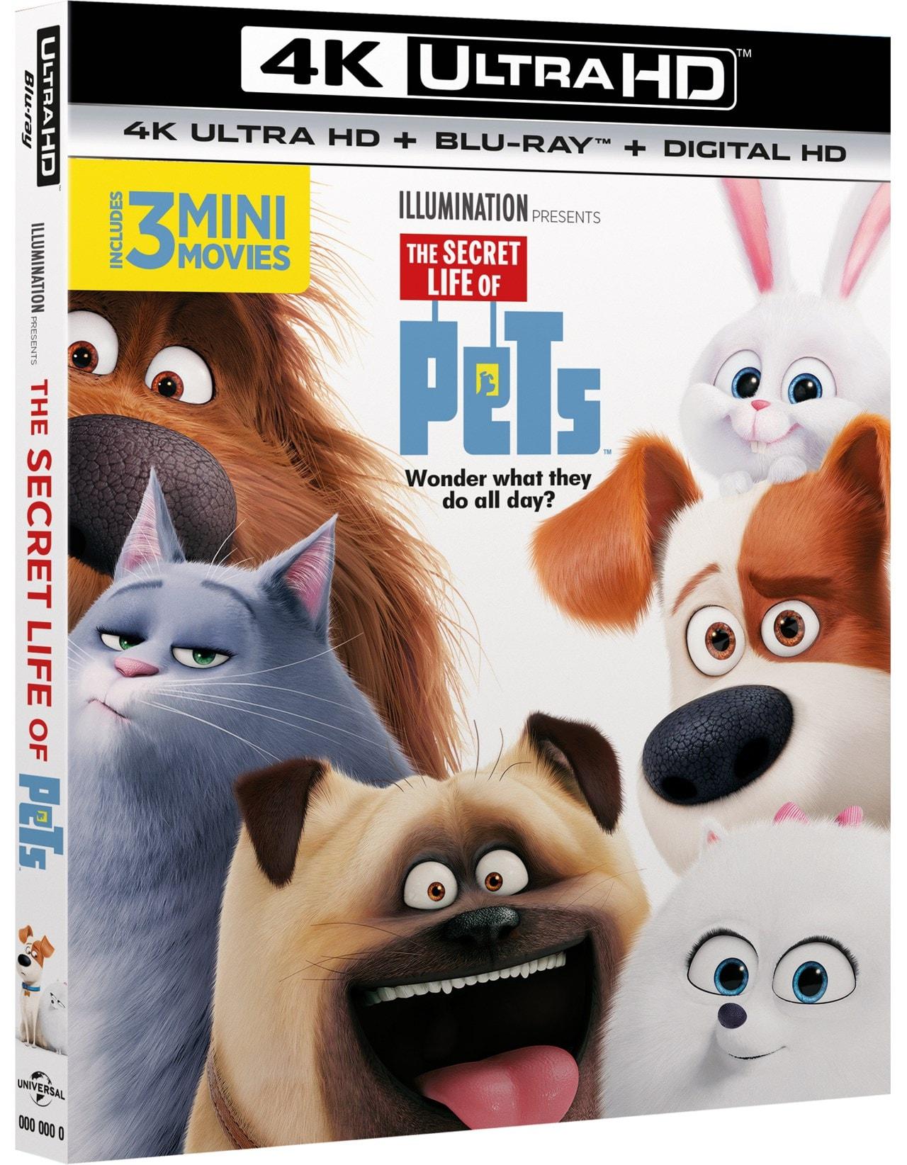 The Secret Life of Pets - 2