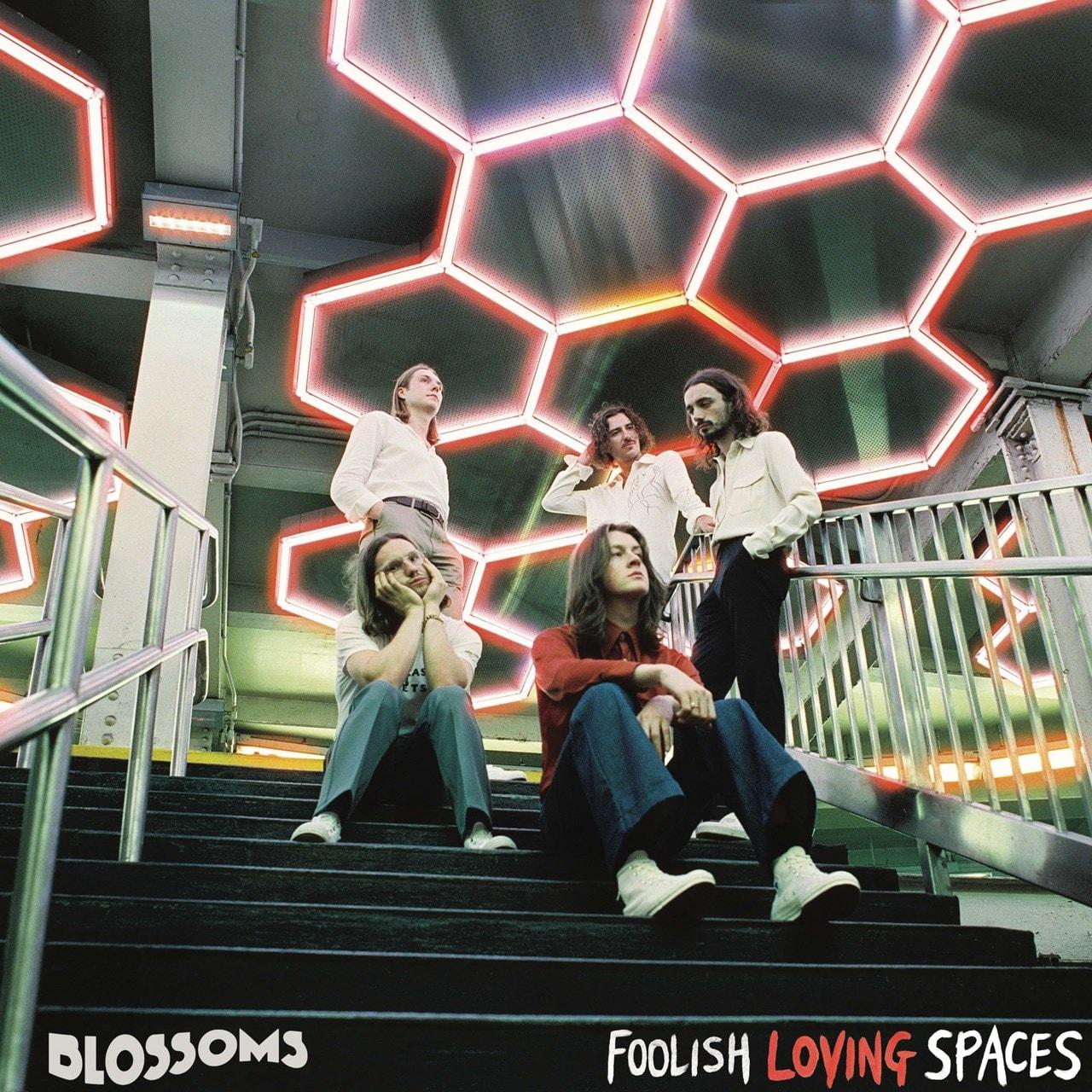 Foolish Loving Spaces - 1