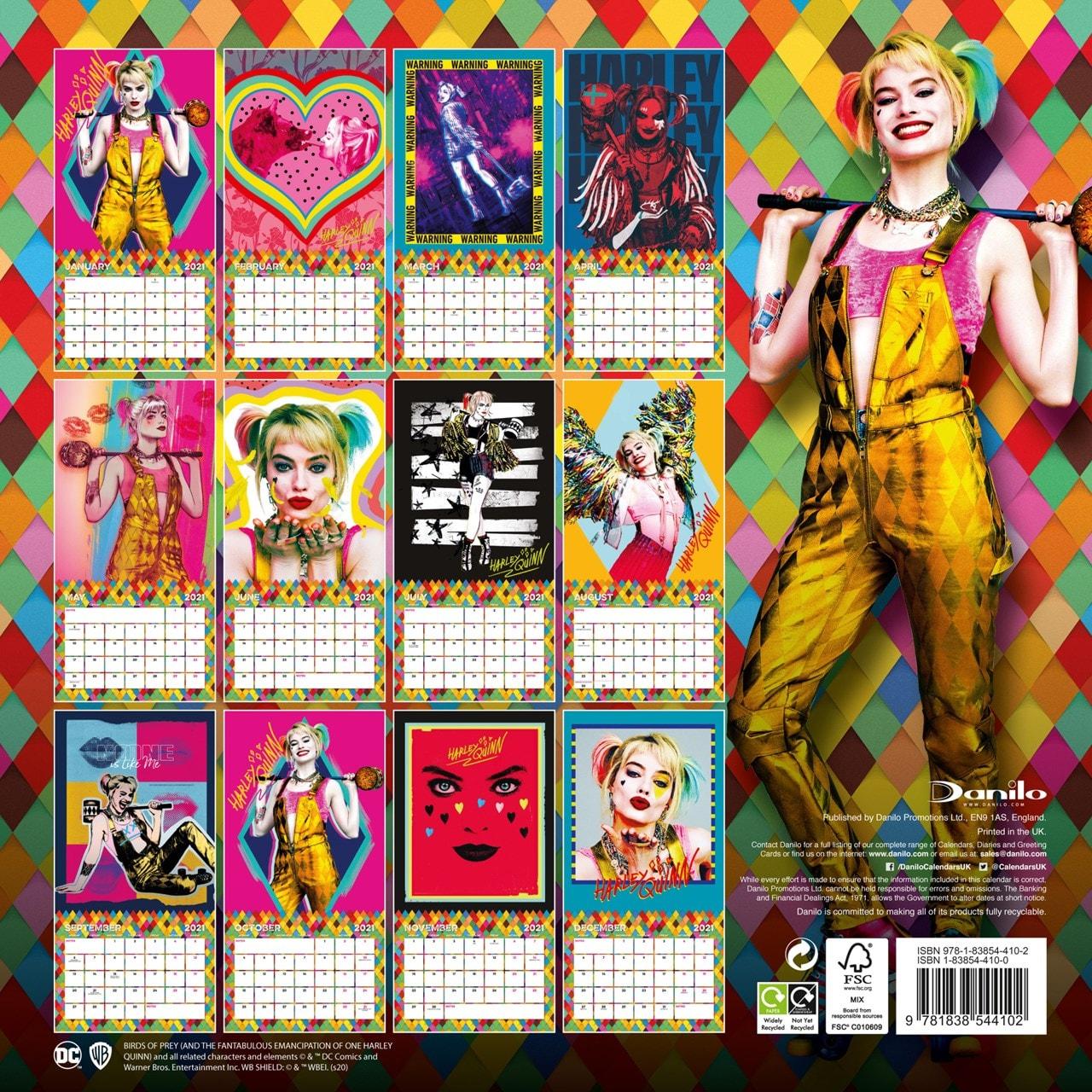 Birds Of Prey: Square 2021 Calendar - 3
