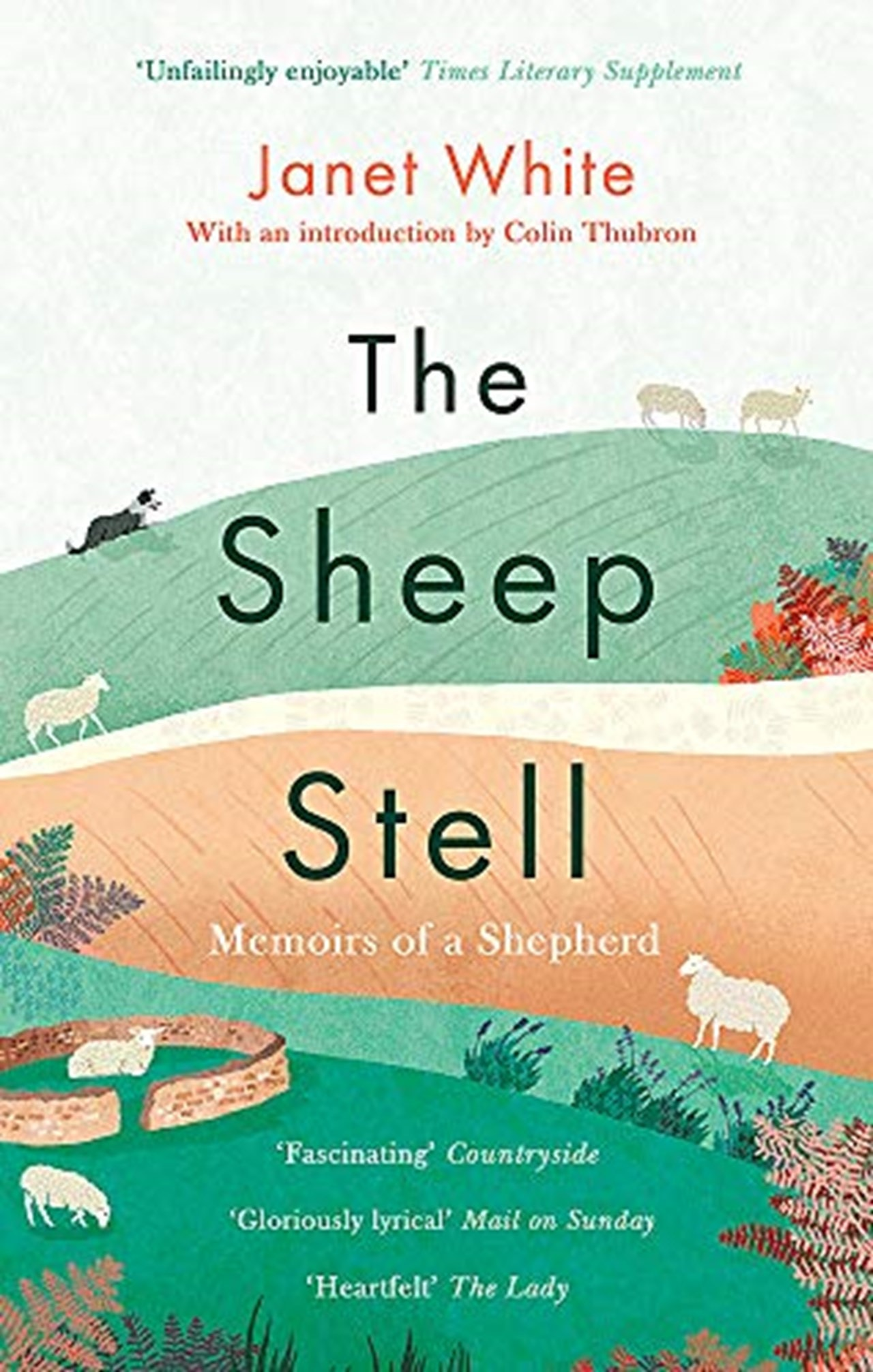The Sheep Stell - 1