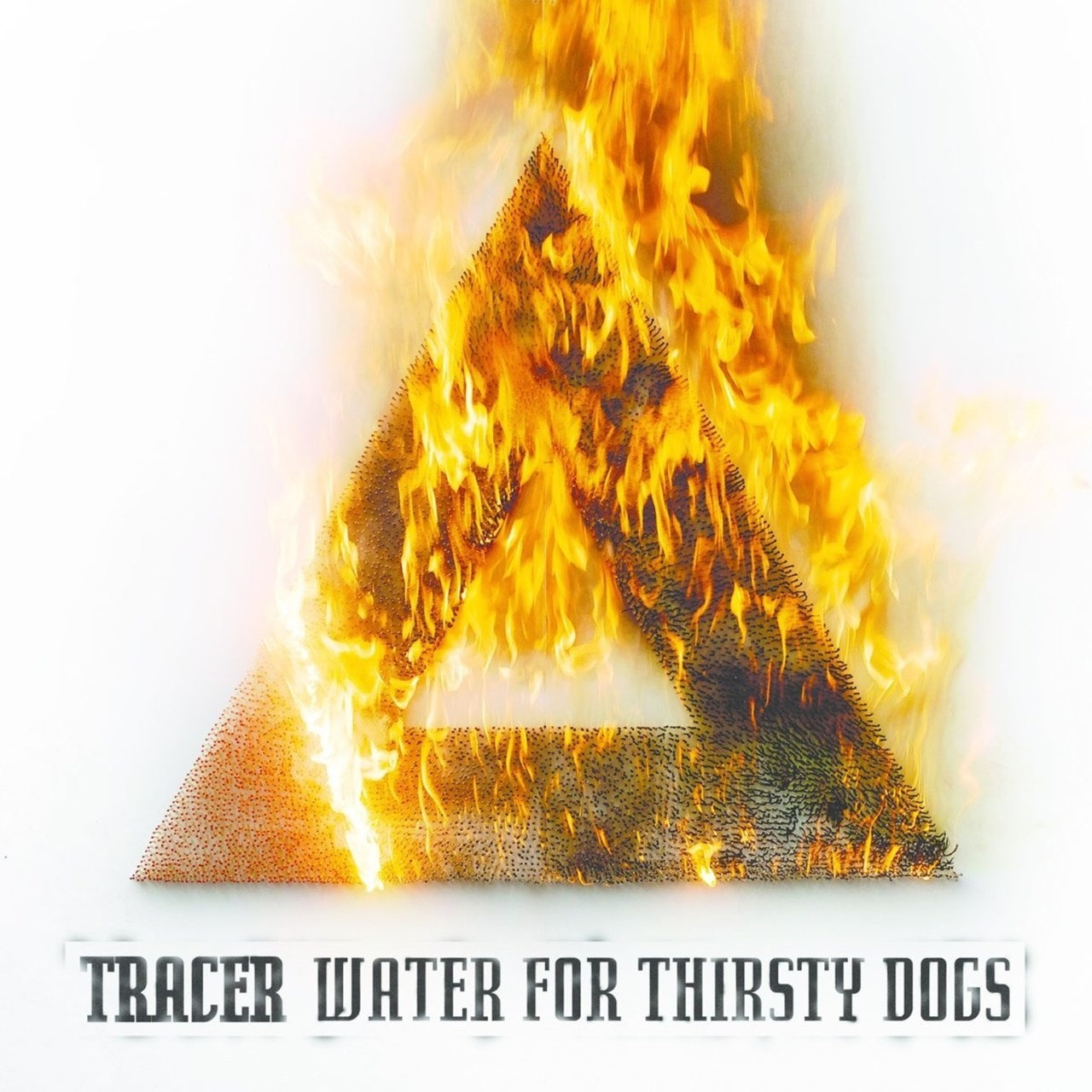 Water for Thirsty Dogs - 1