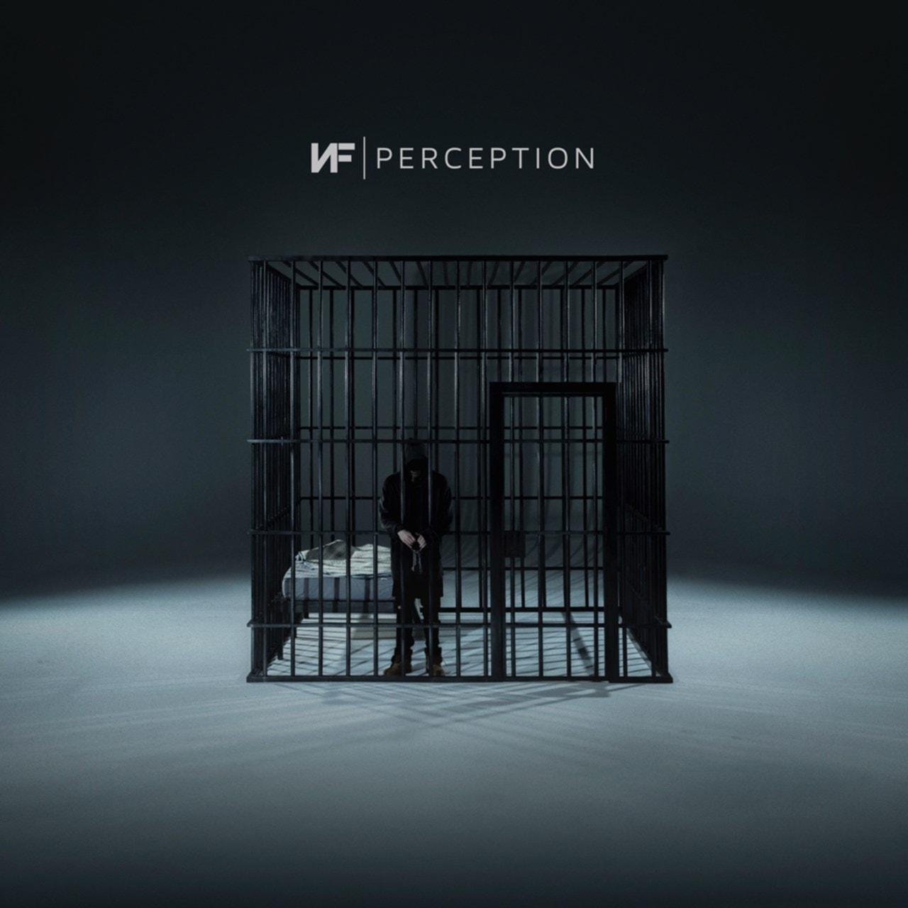Perception - 1