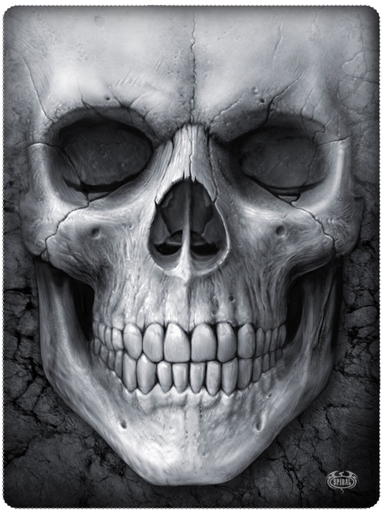 Solemn Skull Fleece Blanket - 2