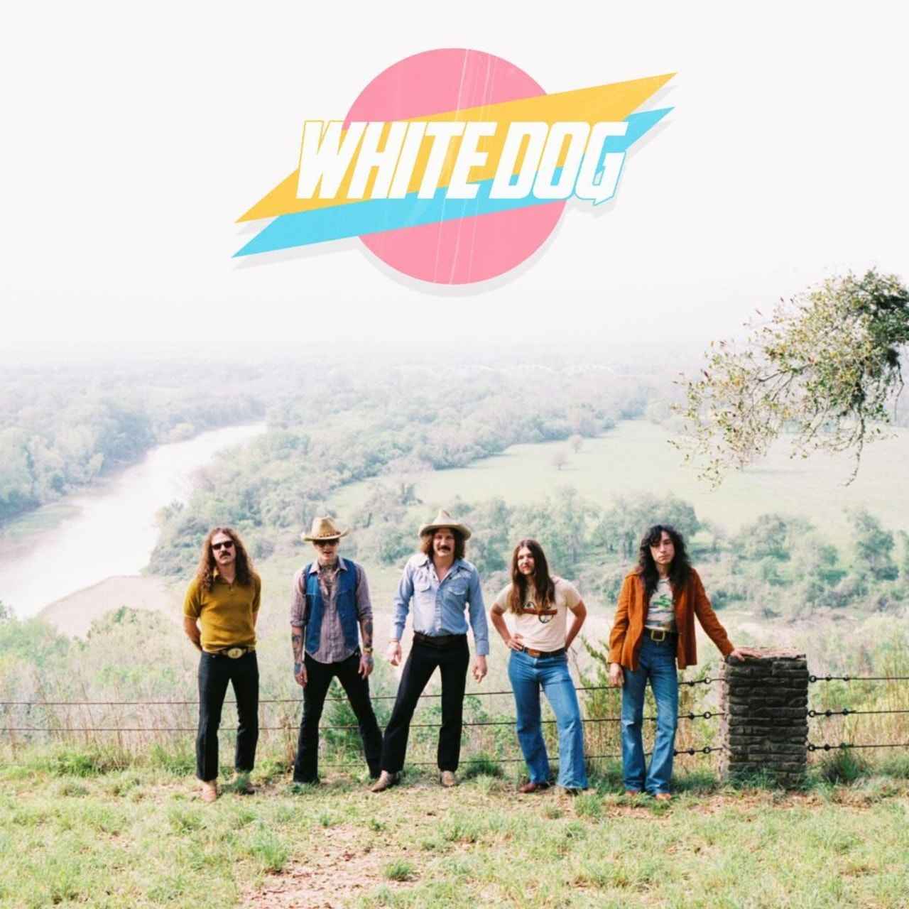 White Dog - 1