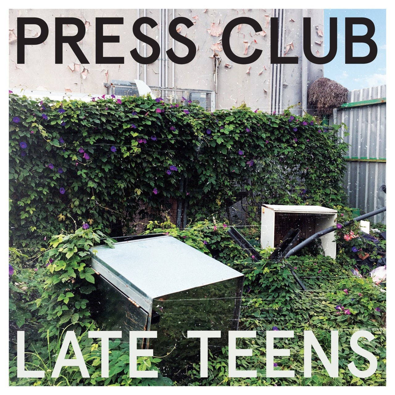 Late Teens - 1