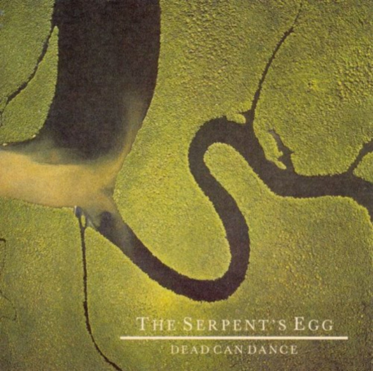 The Serpent's Egg - 1