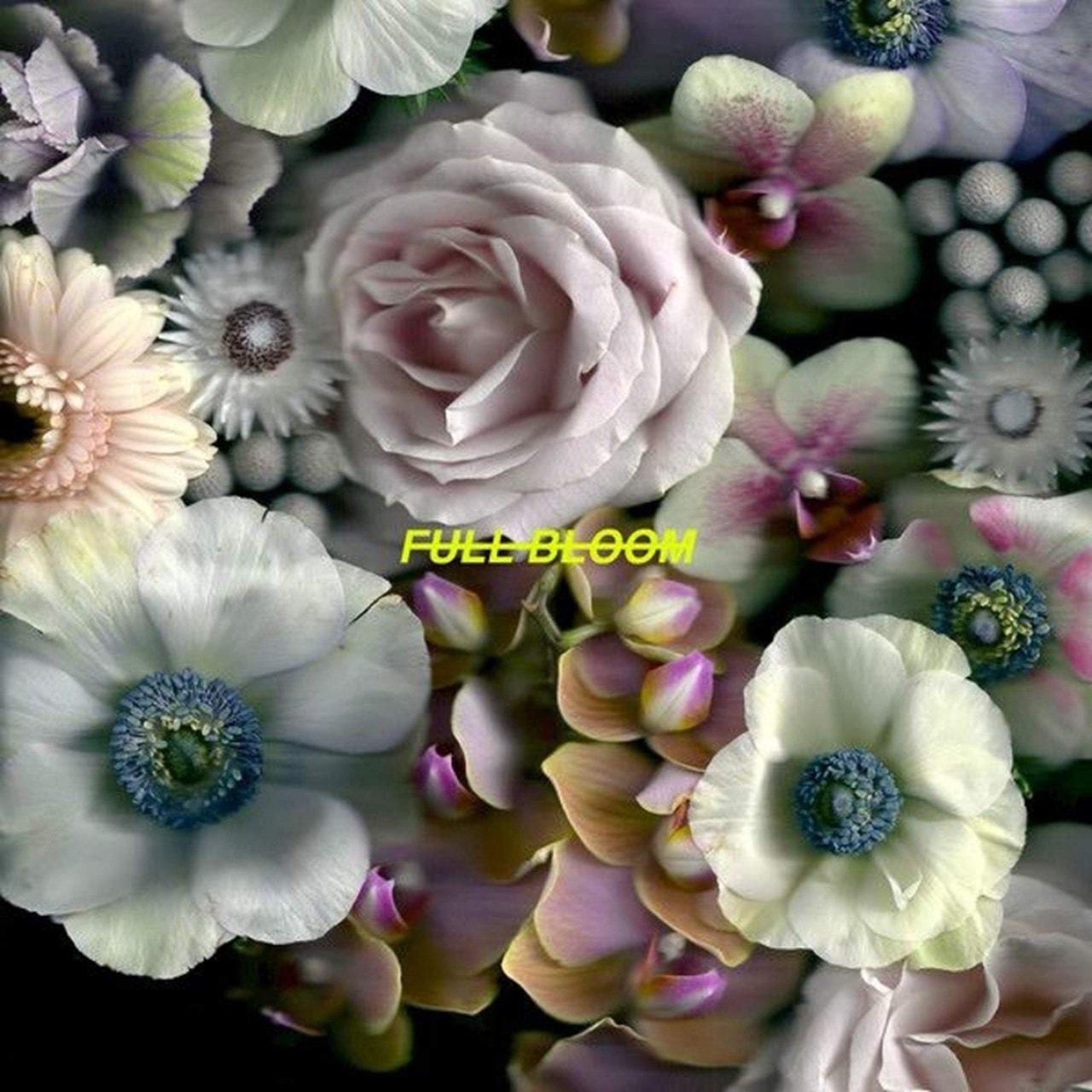 Full Bloom - 1