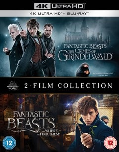 Fantastic Beasts: 2-film Collection - 1
