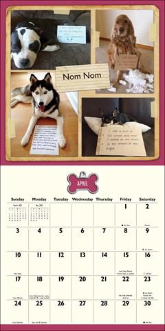 Dog Shaming Square 2022 Calendar - 2