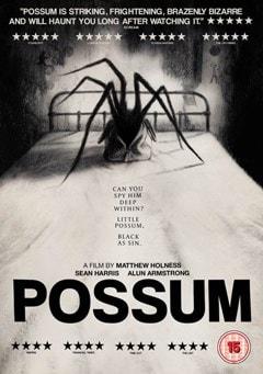Possum - 1