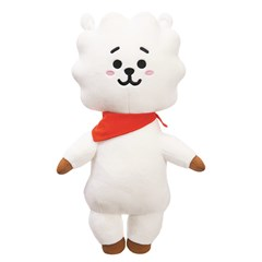 RJ: BT21 Medium Plush - 2