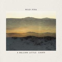 A Billion Little Lights - 1