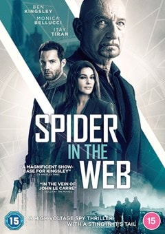 Spider in the Web - 1