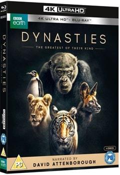 Dynasties - 2