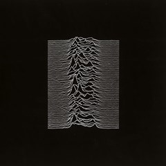 Unknown Pleasures - 1