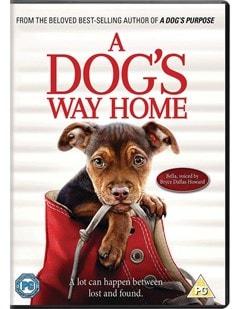 A Dog's Way Home - 1