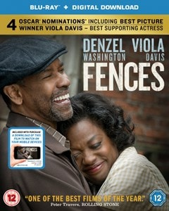 Fences - 1