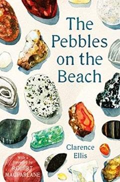 The Pebbles On The Beach - 1
