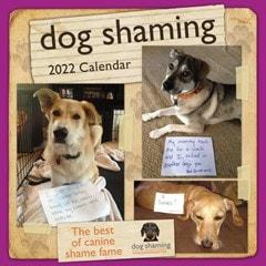Dog Shaming Square 2022 Calendar - 1