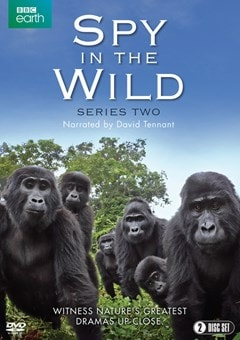 Spy in the Wild: Series Two - 1