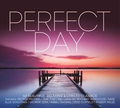 Perfect Day - 1