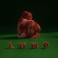 LUMP - 1