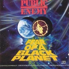 Fear of a Black Planet - 1