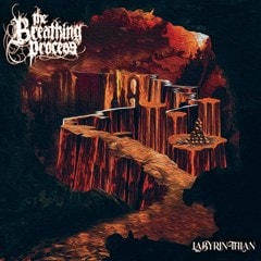 Labyrinthian - 1